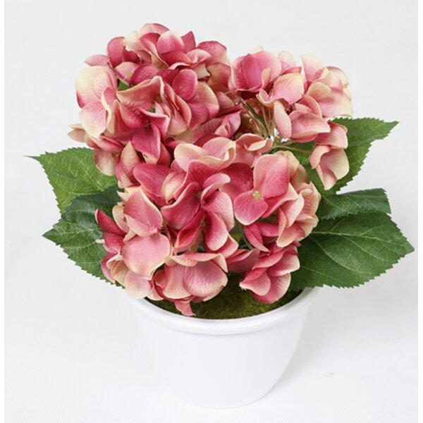 Artificial Hydrangea Flower Floral Arrangement in Pot by Charlton Home