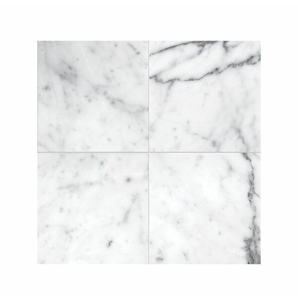 Carrara 4 x 4 Marble Field Tile in Polished White by Parvatile