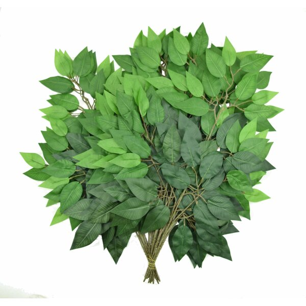 12 Piece Ficus Tree Set by Charlton Home