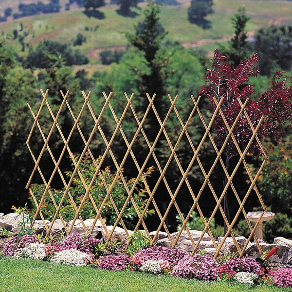 Wood Expanding Trellis Set (Set of 6) by BondManufacturingCo