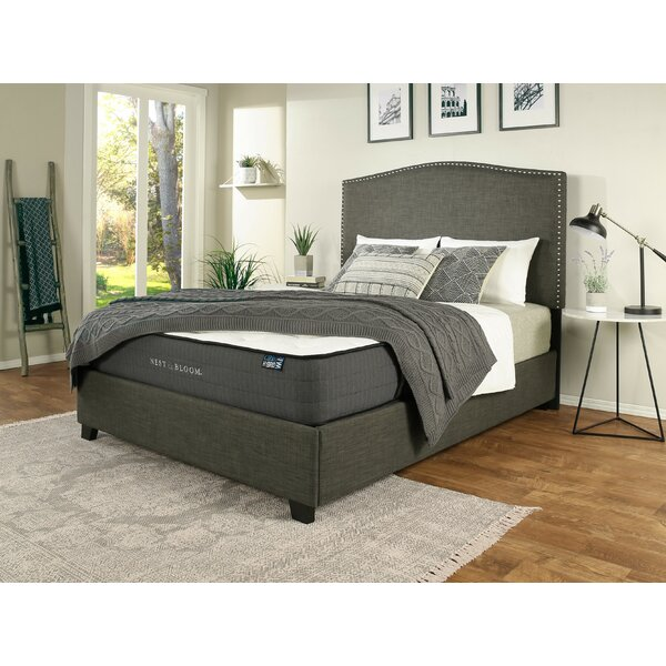 Almodovar Upholstered Standard Bed with Mattress by Darby Home Co