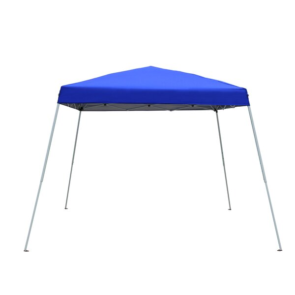 10 Ft. W x 10 Ft. D Steel Pop-Up Canopy by Baner Garden