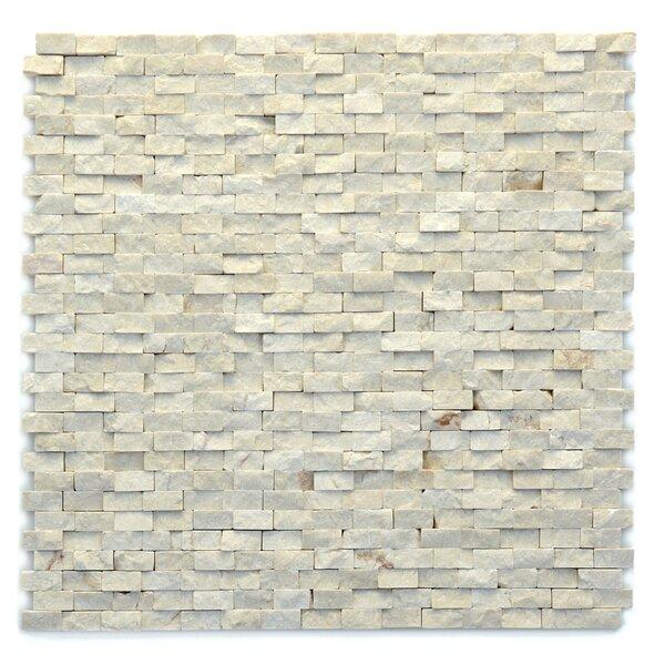 Modern 0.5 x 0.75 Marble Splitface in Fauve by Solistone