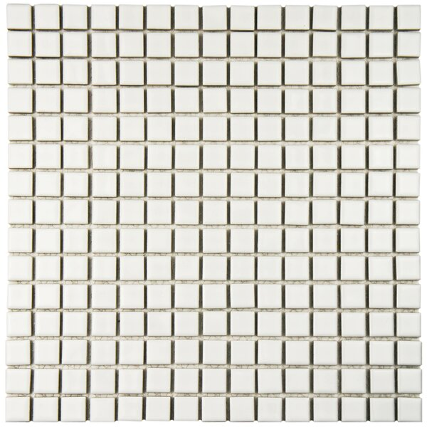 Morgan 0.72 x 0.72 Porcelain Mosaic Tile in White by EliteTile