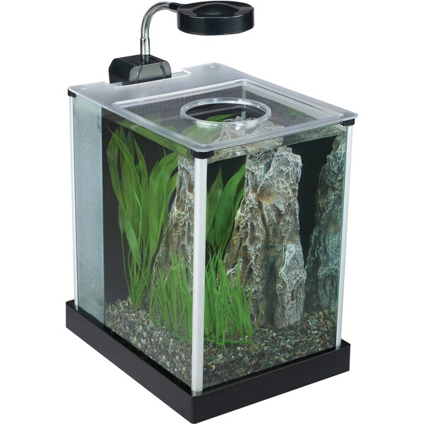 Fluval 2 Gallon Aquarium Kit by Fluval by Hagen