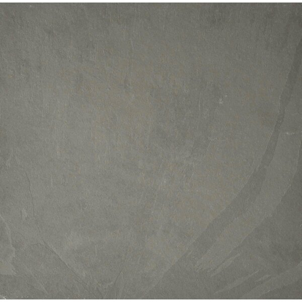Pewter 12 x 12 Slate Field Tile in Gray by The Bella Collection