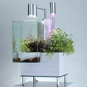 9.5 Gallon Aquaponics System Aquarium Kit