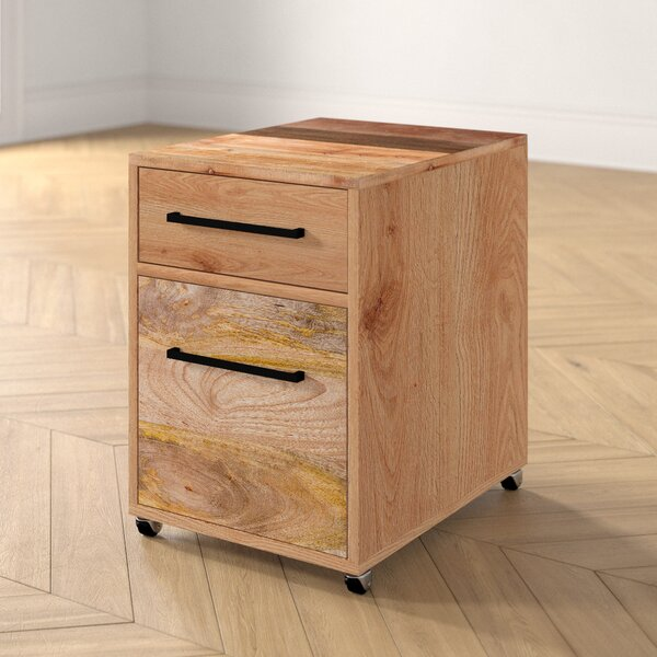 Amy 2-Drawers Mobile Vertical Filing Cabinet