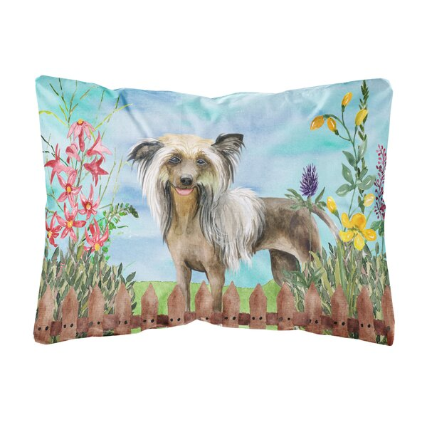 Hays Chinese Crested Spring Indoor/Outdoor Throw Pillow by Winston Porter