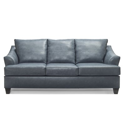 Stjohn Leather Sofa Bed Ivy Bronx Upholstery Color: Shale