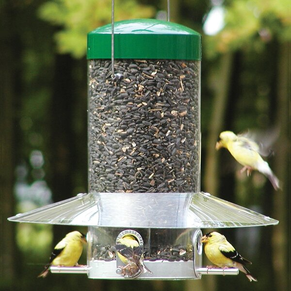 Classic Hanging Tube Bird Feeder by Nature Products
