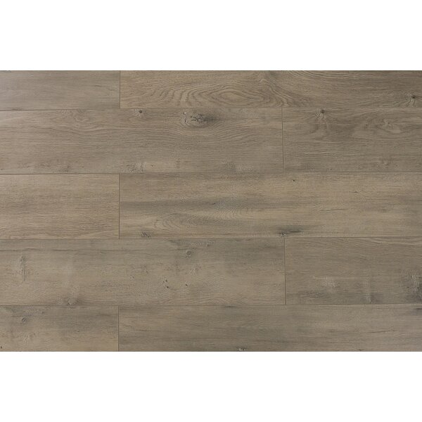 Trini 6.7 x 48 x 12mm Oak Laminate Flooring in Ultra Century by Serradon