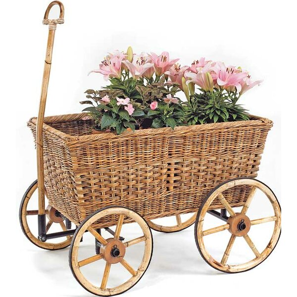 French Country Rectangular Rattan Wheelbarrow Planter by Mainly Baskets
