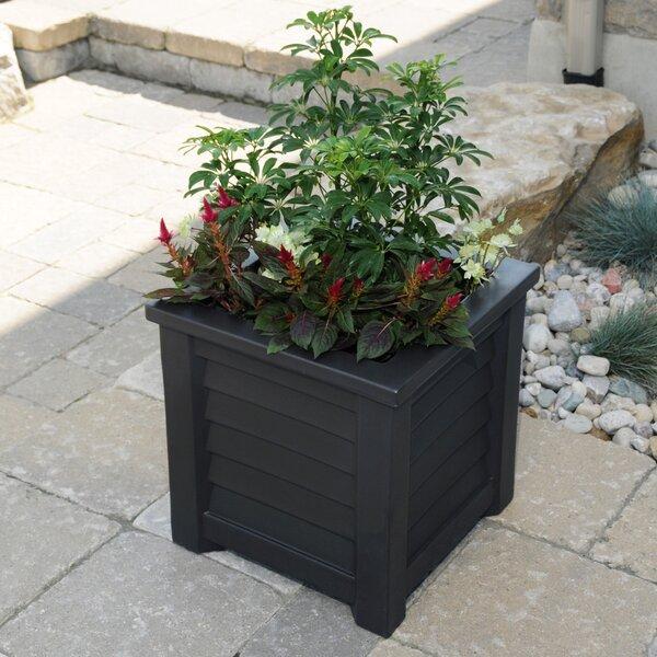 Lakeland Self-Watering Plastic Planter Box by Mayne Inc.