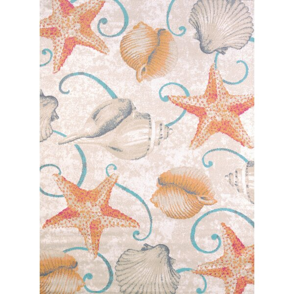 Keyla Star and Shells Area Rug by Beachcrest Home