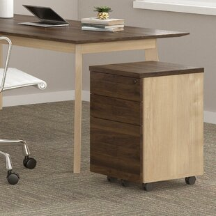 Compare & Buy Barbosa Drawer Mobile Vertical Filing Cabinet by Ivy Bronx