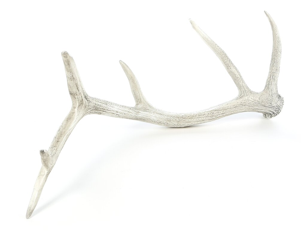 Weathered Elk Antler Sculpture