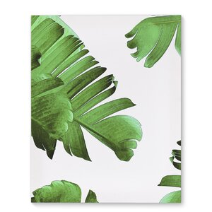 'Palm Envy' Graphic Art Print on Canvas by KAVKA DESIGNS