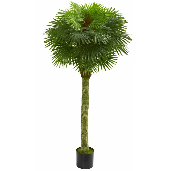 Fan Floor Palm Tree by Bayou Breeze