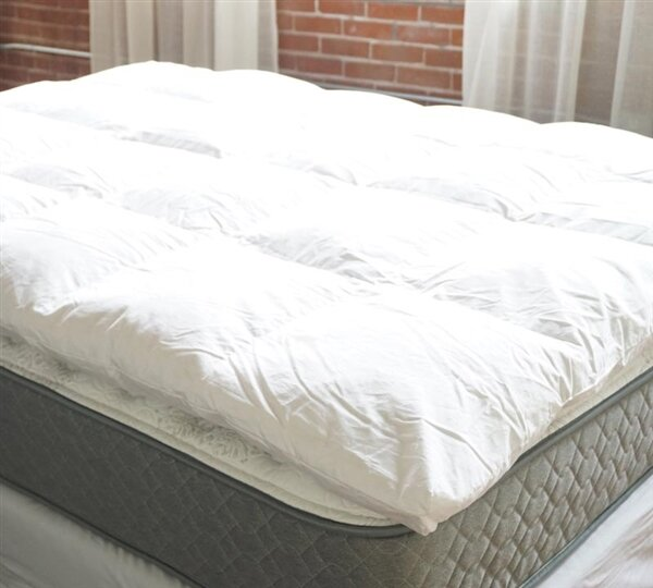 2 Duck Featherbed Down Mattress topper by Alwyn Home