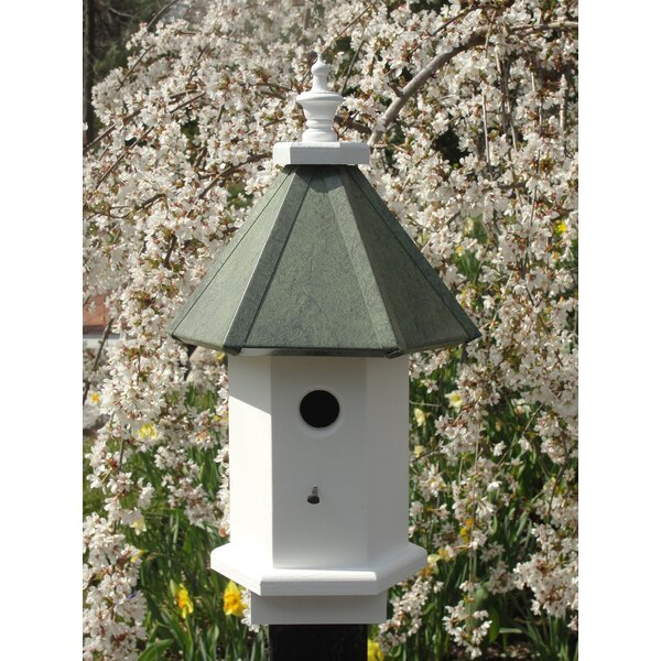 20 in x 10 in x 10 in Birdhouse by Wooden Expression Birdhouses