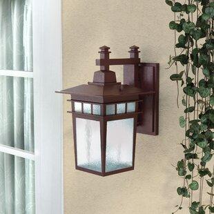 Reviews Hannon 1-Light Outdoor Wall Lantern By Alcott Hill
