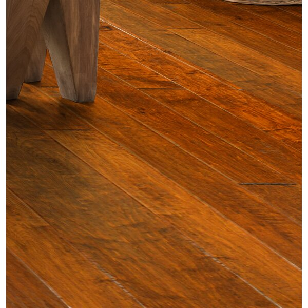 Olde Worlde 5 Engineered Maple Hardwood Flooring in Bath by Wildon Home ®