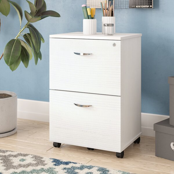 Boutwell 2 Drawer Mobile Vertical Filing Cabinet