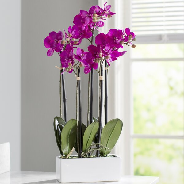 Artificial Orchid Flowers in Vase by Mercer41