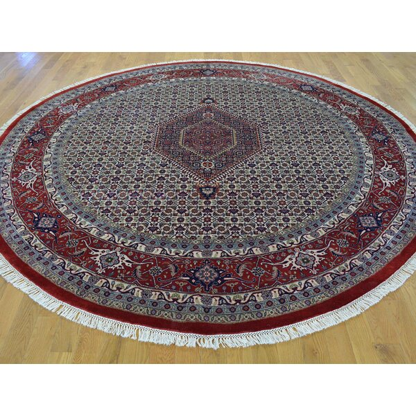 One-of-a-Kind Beyer Mahi Bidjar Hand-Knotted Ivory Wool Area Rug by Isabelline
