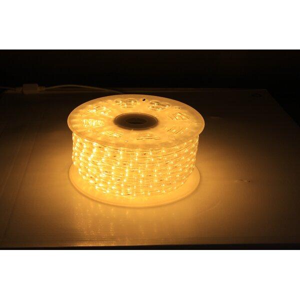 6 ft.LED Rope Light by American Lighting LLC