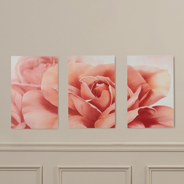 Robelmont Pretty Fresh Rose Flower Triptych 3 Piece Photographic Print on Wood Set by House of Hampton