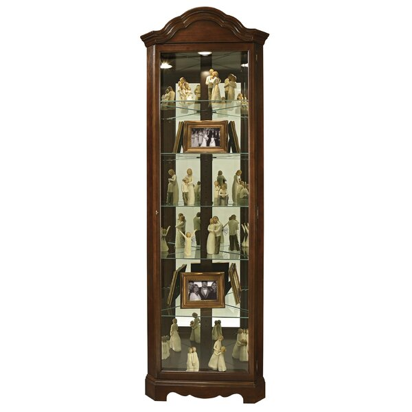 Brillion Curio Cabinet by Darby Home Co