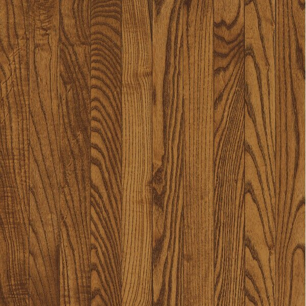 Dundee 3-1/4 Solid White Oak Hardwood Flooring in Fawn by Bruce Flooring