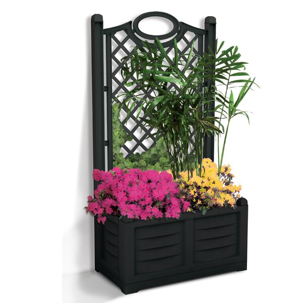 Separe Flower Resin Planter Box with Trellis by Apollo Exports International Inc.