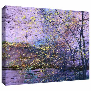 'Aravaipa Canyon Dusk' Photographic Print on Wrapped Canvas by Zipcode Design