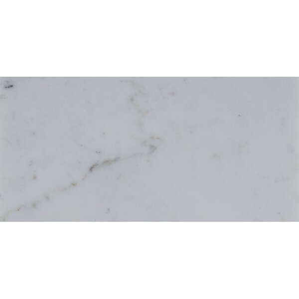 3 x 6 Polished Marble Tile in Carrara White by MSI