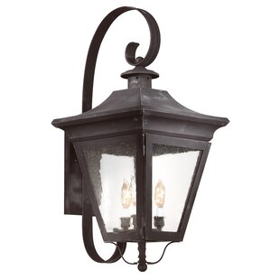 Looking for Theodore 3-Light Outdoor Wall Lantern By Darby Home Co