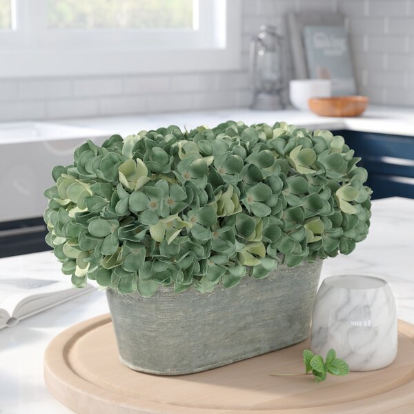 Hydrangea Centerpiece in Oval Planter by Beachcrest Home