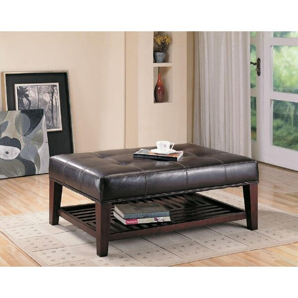 Dover Faux Leather Shelves Storage Bench By Winston Porter