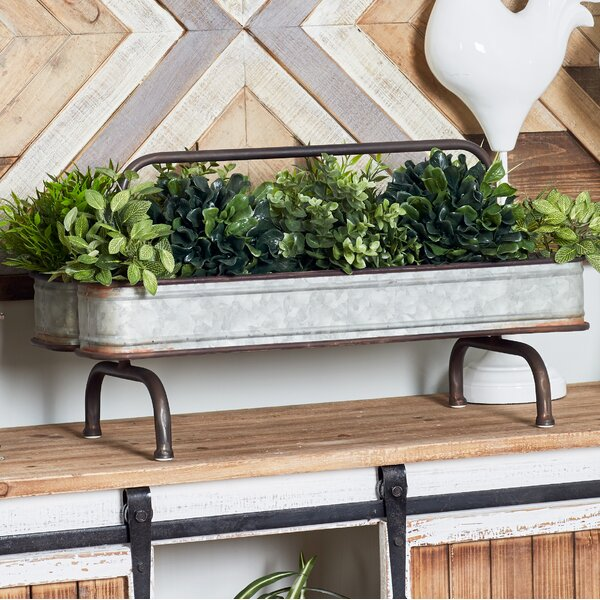 Farmhouse Galvanized Double Raised Garden by Cole & Grey
