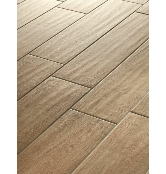 Vivaldi 6 x 24 Porcelain Wood Tile in Spring by Lea Ceramiche