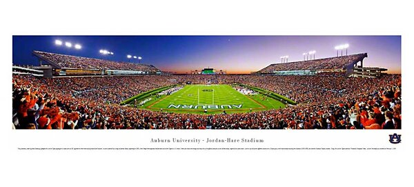NCAA End Zone Unframed Panorama by Blakeway Worldw