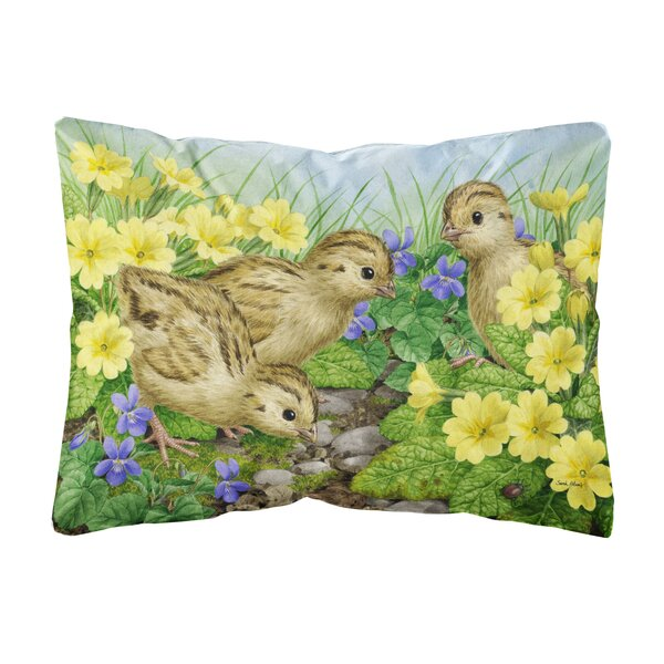 Rusnak Pheasant Chicks Fabric Indoor/Outdoor Throw Pillow by Winston Porter
