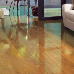 High Gloss 3-1/4 Solid Oak Natural Hardwood Flooring by Somerset Floors