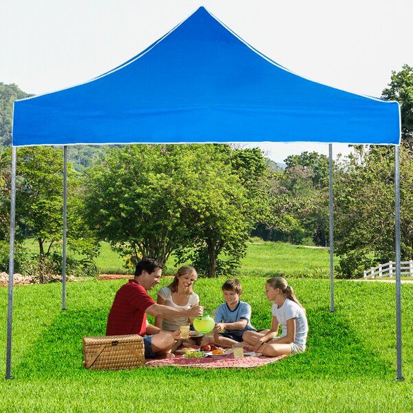 10 Ft. W x 10 Ft. D Steel Pop-Up Canopy by Stalwart