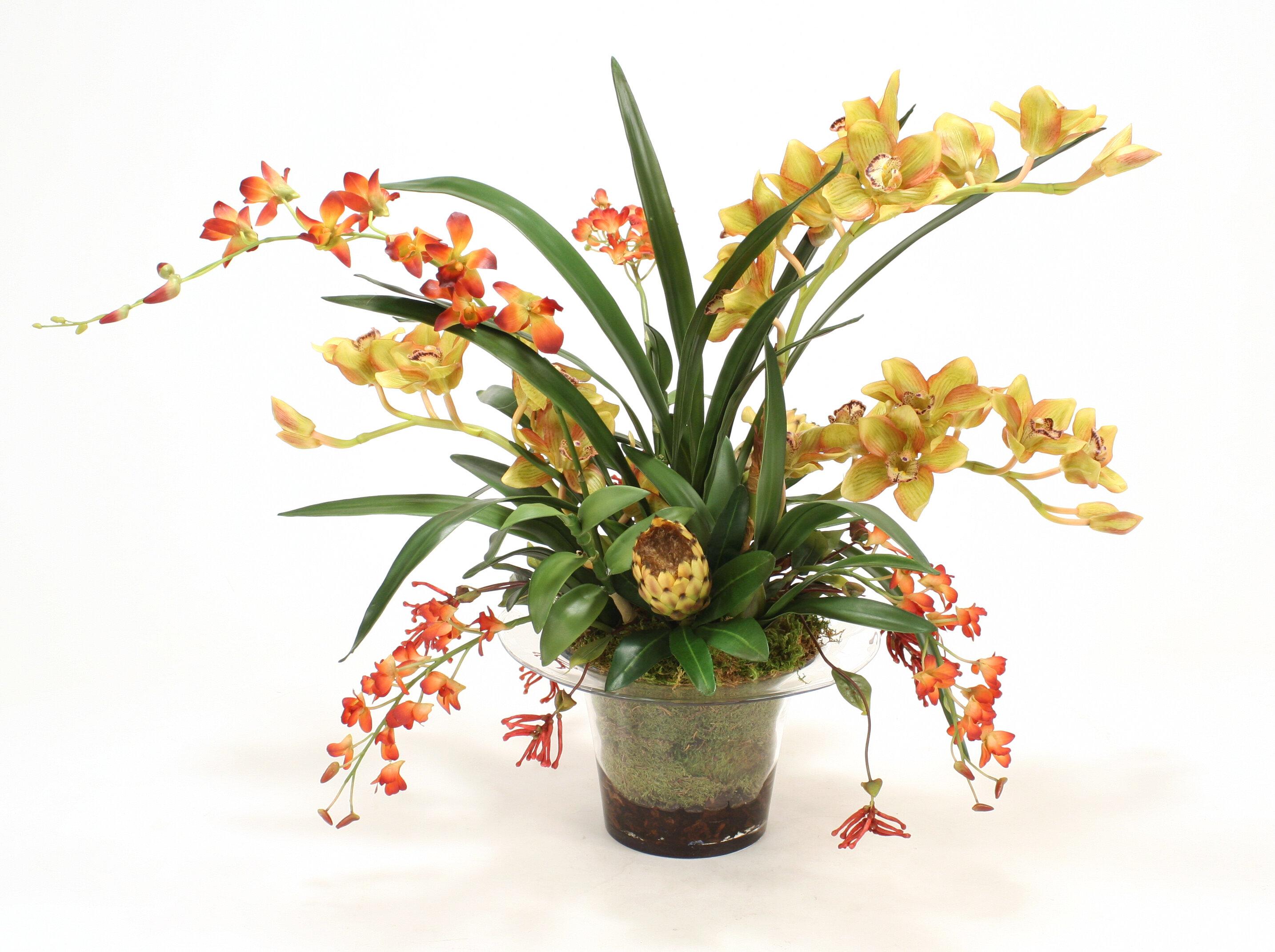 floral home decor orchid floral design wayfair.htm distinctive designs tropical orchid mix in glass vase wayfair  tropical orchid mix in glass vase