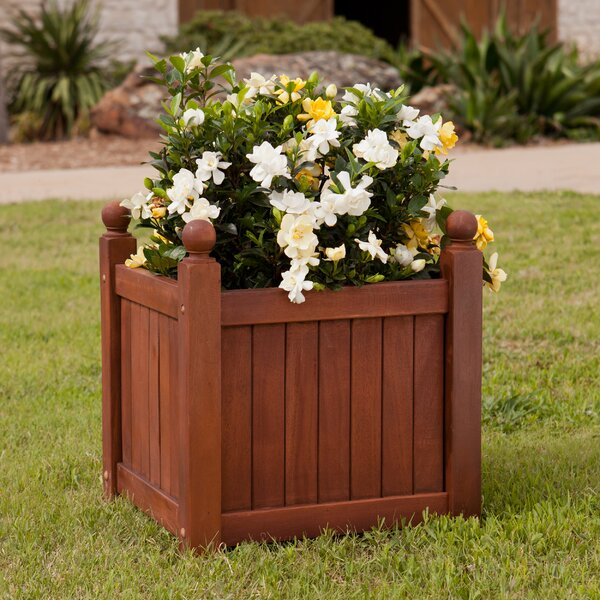 Hardwood Planter Box by Wildon Home ®