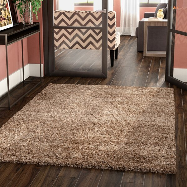 Starr Hill Shag Dark Beige Area Rug by Zipcode Design