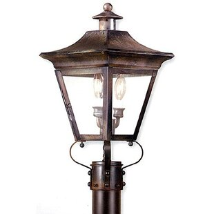 Find Theodore 2-Light 60W Lantern Head By Darby Home Co